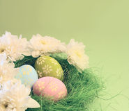 Easter card. With chrysanthemums and eggs with copy space Royalty Free Stock Photo