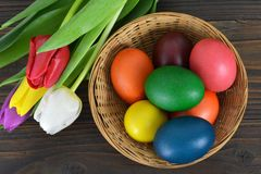 Easter card with Easter egg in the basket and spring flowers Royalty Free Stock Photography