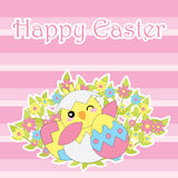 Easter card with cute chick, eggs and flowers on pink stripes background Stock Photo