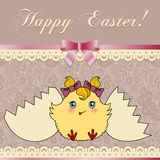 Easter card with cute chicken Royalty Free Stock Image