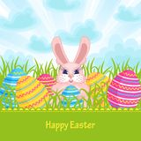Easter card with Easter bunny and eggs Stock Photography