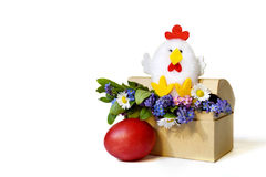 Easter card: Easter chicken, spring flowers and Easter egg isolated on white Royalty Free Stock Images