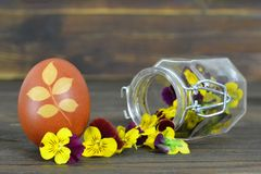 Easter card with Easter egg colored with onion and spring flowers Stock Photos