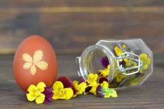 Easter card with Easter egg and spring flowers in the jar Royalty Free Stock Photos