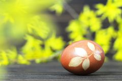 Easter card with Easter egg colored with onion. Easter egg and yellow spring flowers. Easter card with Easter egg colored with onion peel. Easter egg and yellow royalty free stock photos