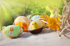 Easter card with eggs and chicken Royalty Free Stock Photo