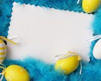 Easter Card . Eggs Feathers Background. Stock Photo. Easter Card . Eggs Feathers Background - Yellow and White Eggs on Blue Plumes Royalty Free Stock Photography