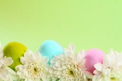 Easter card. With eggs and flowers and copy space Stock Image