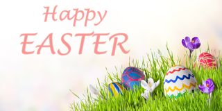 Easter Card with Eggs and Flowers stock photo