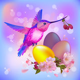 Easter card with eggs,flowers and humming-bird Royalty Free Stock Images