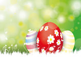 Easter Card 3 Eggs White Grass Stock Image