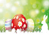 Easter Card 3 Eggs White Grass Rabbit Royalty Free Stock Images