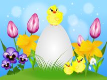 Easter card with flowers and chicken Stock Image