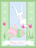 Easter Card With Funny Bunny Royalty Free Stock Photo