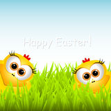 Easter card with funny chickens Royalty Free Stock Photo