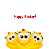 Easter card with funny chickens Stock Image