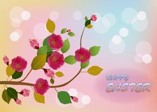Easter card with  spring flowers royalty free stock image