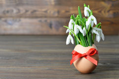 Easter card: Spring flowers in eggshell Royalty Free Stock Images