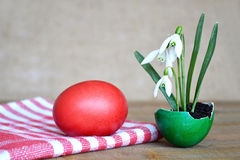 Easter card: Spring flowers in eggshell on wooden table Stock Images