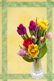 Easter card with tulips Royalty Free Stock Photography