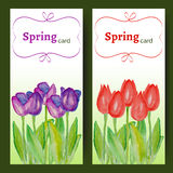 Easter cards with spring flowers - tulips. Vector cards with spring tulips. Wedding invitation. Easter card. Vector floral illustration. Templates with red and Royalty Free Stock Photos