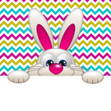 Easter cartoon bunny with place for text Royalty Free Stock Photography