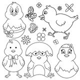 Easter Cartoon Chicken Line Art Set Stock Photography