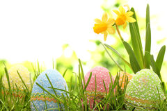 Easter celebration Stock Photography