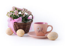 Easter cheer Royalty Free Stock Image