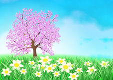 Easter cherry tree background Stock Images