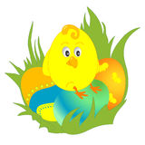 Easter chick. Cute little chicken sitting on the easter eggs stock illustration