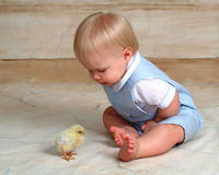 Easter Chick and Baby. Curious baby looking at Chick stock photo