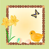 Easter chick with butterflies and daffodils vector Royalty Free Stock Photo