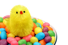 Easter Chick in Champagne Glass of Candy Royalty Free Stock Images