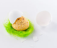 Easter Chick Cookie  Decorated with Nest and Egg Shell Stock Image