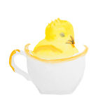 Easter chick in the cup. On white background Stock Photos
