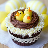 Easter chick cupcakes Stock Photos