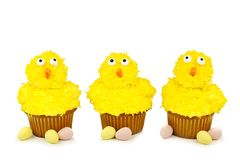 Easter chick cupcakes over white Royalty Free Stock Image