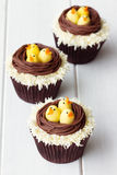 Easter chick cupcakes royalty free stock images