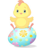 Easter chick. Cute chick sitting on Easter egg stock illustration