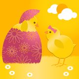 Easter chick in easter egg Stock Image