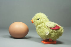 Easter chick and egg isolated Royalty Free Stock Image
