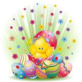 Easter Chick and Eggs Background Royalty Free Stock Photos