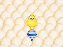Easter chick in the eggs Stock Photos