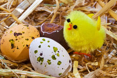Easter chick and eggs in a nest. Photo of a toy easter chick and chocolate candy covered eggs in a nest Stock Photo