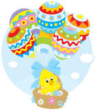 Easter Chick flies with balloons. Little yellow chicken flying in a basket with balloons colored like Easter eggs Stock Photo