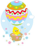 Easter Chick flying in a balloon Stock Photos