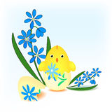 Easter chick hatched from an egg Royalty Free Stock Images