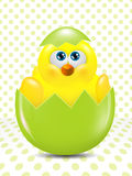 Easter chick hatched from egg over dots  background Royalty Free Stock Image