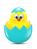 Easter chick hatched from egg over white background Royalty Free Stock Photo
